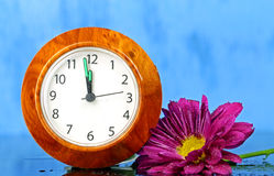 A  watch with a pink Chrysanthemum. On blue background royalty free stock photography