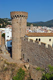 Watch tower Royalty Free Stock Photo