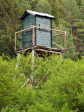 Watch tower in deep forest Stock Photography