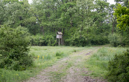 Watch tower in forest in summer time Stock Photo
