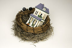 Watched Nest Egg Stock Photography