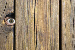 The watcher!. Eye peeking through a hole in a fence Royalty Free Stock Image