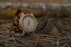 Watches in the woods. Wooden watches beautiful and fashion, natural trend royalty free stock images