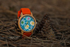 Watches in the woods. Wooden watches beautiful and fashion, natural trend stock photography