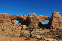 Watchful eyes and big nose, Arches National Park. Arches National Park in Utah Stock Photos