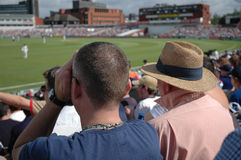 Watching Cricket. Two men in acrowd watching a cricket match Royalty Free Stock Images
