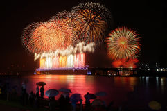 Watching firework show Stock Images