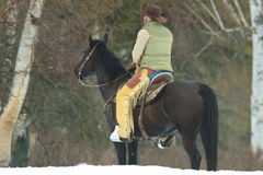 Watching the herd in wintertime Stock Photos