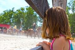 Watching Horse Roping Stock Image