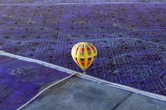 Yellow hot air balloon flying over a field of Lavender. Watching a mostly yellow hot air balloon fly over a field of Lavender in Temecula, California royalty free stock photography