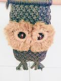 The watching owl Stock Images
