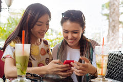 Watching something on the smartphone. Vietnamese young girls sitting in the cafe and watching something on the smartphone royalty free stock photo