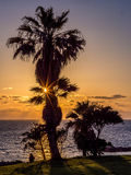 Watching the sunset on the mediterrean sea Royalty Free Stock Photos