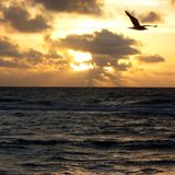 Watching the sunset by the ocean Stock Photos