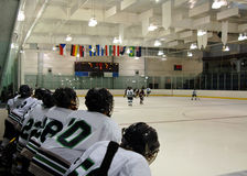 Free Watching The Hockey Game Royalty Free Stock Images - 3721789