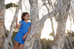 Watching from a tree Royalty Free Stock Photos