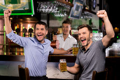 Watching TV in bar. Two happy young men drinking beer and gesturing while sitting in bar stock images