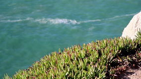 Watching the water on a cliff green grasses on top of the mountain Stock Photo