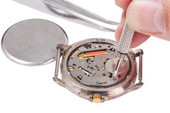 Watchmaker replaces battery in watch. Repairing of watch - watchmaker replaces battery in quartz wristwatch isolated on white background Royalty Free Stock Photos