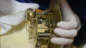 Watchmaker with white gloves overhauls mechanical system of antique pendulum clock stock video