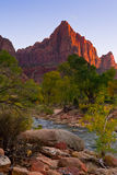 The Watchman. Sunset Light on the Watchman in Zion National Park Stock Images