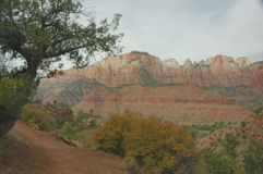 The Watchman Trail, Zion Royalty Free Stock Photo
