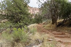 Watchman Trail in Zion. National Park, Utah USA Stock Photography