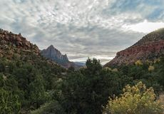 View to The Watchman, Zion National Park Stock Photography