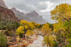 Watchman and Virgin River in fall. The virgin river and the watchman in Zion national Park Utah in autumn Stock Photos