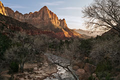 The Watchman. And the Virgin River, Zion National Park Stock Photos