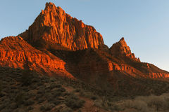The Watchman. Of Zion National Park Royalty Free Stock Photos