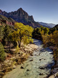 The Watchman, Zion National Park Royalty Free Stock Image