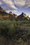 The Watchman at Zion National Park. In the Spring Royalty Free Stock Image