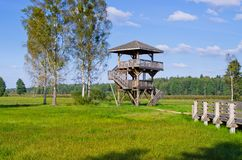 Watchtower in Bialowieza forest, Poland. Watchtower in Bialowieza forest - Poland stock photo