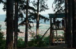 Watchtower in the forest for looking wildlife animal and birds. Stock Images