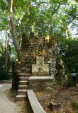 Watchtower in Sintra forest. Portugal Royalty Free Stock Images