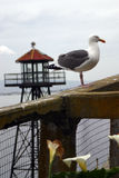 Watchtower van Alcatraz Royalty-vrije Stock Foto's