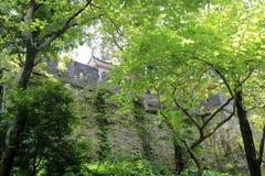 Watchtowercity antigo na floresta Imagem de Stock Royalty Free