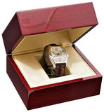 watchwrist Royaltyfria Bilder