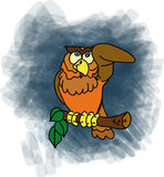 The watcing owl Royalty Free Stock Photo