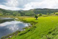 Watendlath Tarn Lake District Cumbria England UK Stock Image