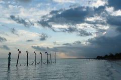In-water επιστολές Holbox με τις αιώρες στοκ φωτογραφίες με δικαίωμα ελεύθερης χρήσης