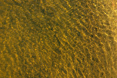 Water 1 Royalty Free Stock Image