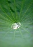 Water Stock Image