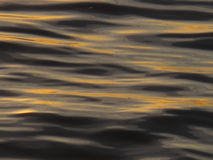 Water abstract 1. Water abstract, sunset on ocean Royalty Free Stock Photo