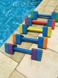 Water aerobics - 2. Five colorful dumbbell weights for water aerobics aligned by the poolside Stock Photography
