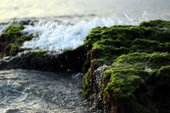 Water Against Green Grey Mossy Stones Royalty Free Stock Photography