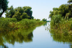 Water alley. In Danube Delta Stock Photography