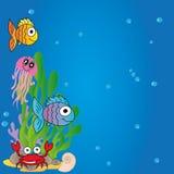 Water animals Stock Photo