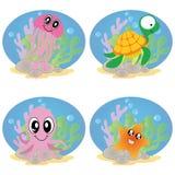Water animals Stock Image
